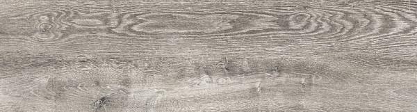 GeoCeramica® 120x30x4 Weathered Oak Danzig
